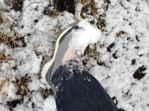 Snowy new snow boot